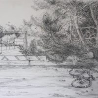 George Wallace - Beacon Hill Park, 1989, pencil