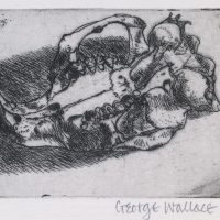 George Wallace - Rodent Skull - etching - 1965