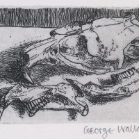 George Wallace - Rabbit Skull - etching - 1965