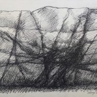 George Wallace - Rock Face - pen & ink drawing